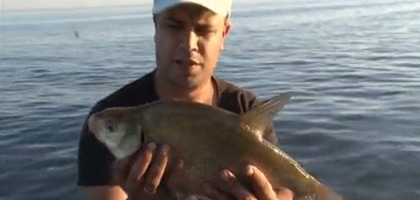 Рыбачьте с нами. Октябрь 2011.
