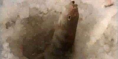 Ловля окуня и плотвы. Рыбалка на рыбинском водохранилище.