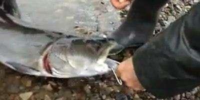 Рыбалка на Тикси