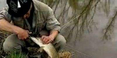 Ловля леща в Казахстане