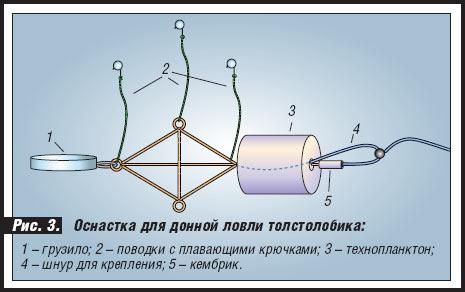 технопланктон в домашних условиях чертеж